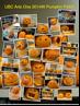 Pumpkins_ArtsOne 2015W